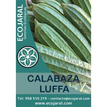 Semillas Calabaza Luffa...