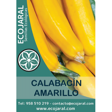 Semillas de Calabacín Amarillo