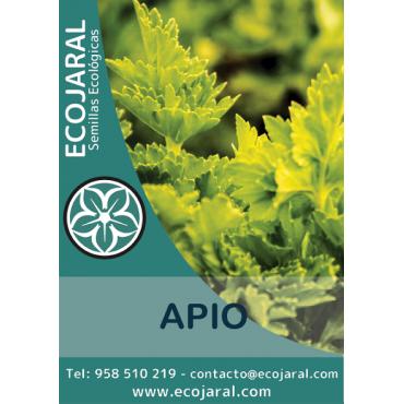 Semillas ecológicas de Apio