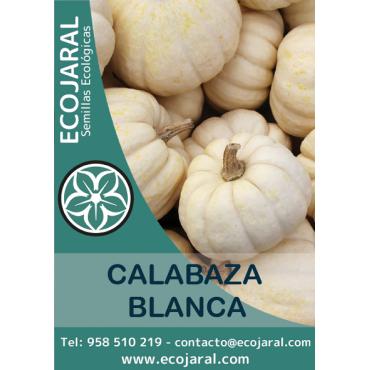 Semillas de Calabaza Blanca