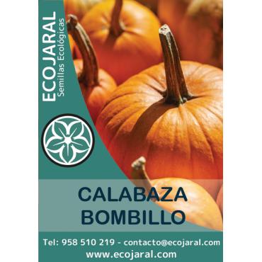 Semillas de Calabaza Bombillo