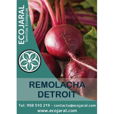 Semillas de Remolacha Detroit