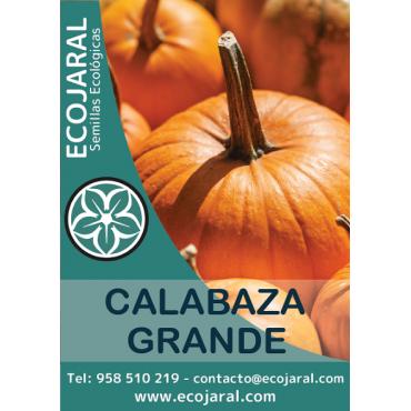 Semillas Calabaza Grande