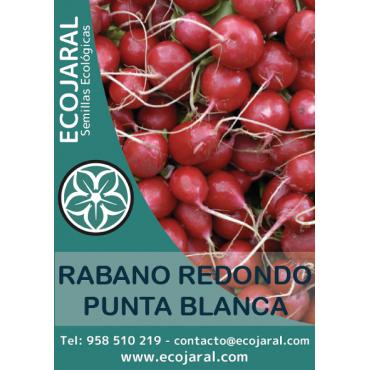 Semillas Rabano Rojo...