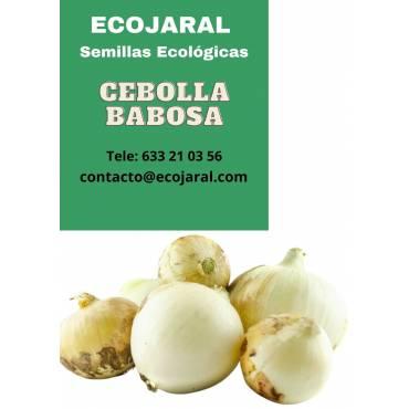 Semillas de Cebolla Babosa