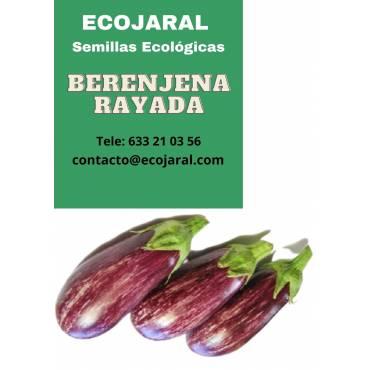 Semillas de Berenjena Rayada
