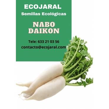Semillas de Nabo Daikon