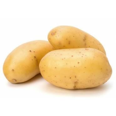 Patata Nueva Blanca Fabula...
