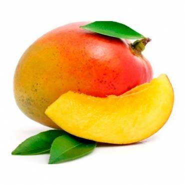 Mango Ecológico Tommy - Ud