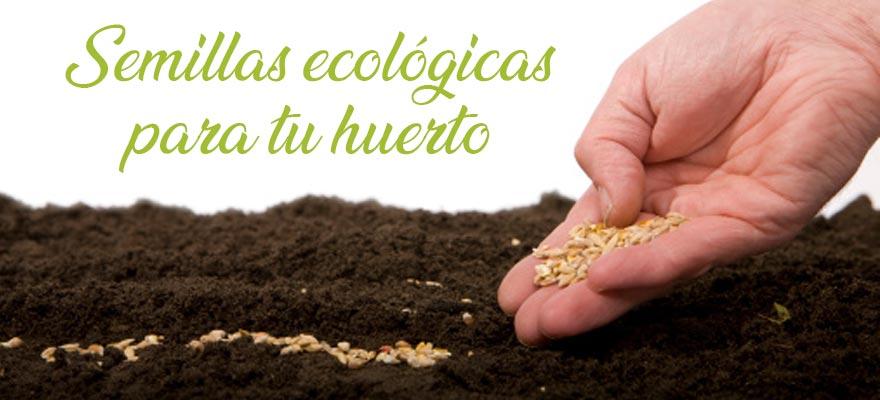 Semillas hortícolas ecológicas